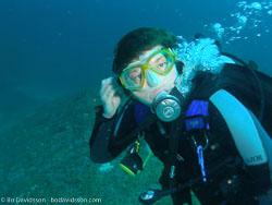BD-070402-Similan-4020086-Homo-sapiens.-Linnaeus.-1758-[Diver].jpg